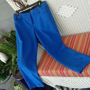 Express Cobalt Blue Columnist pants 4r